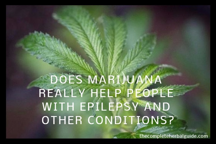 DOES MARIJUANA REALLY HELP PEOPLE WITH EPILEPSY AND OTHER CONDITIONS